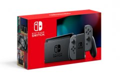 Nintendo Switch Gray